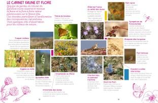 brochure-gsgq-2015-18-19